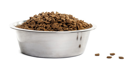 croquettes: Dog bowl with croquettes full to the brim, isolated on white