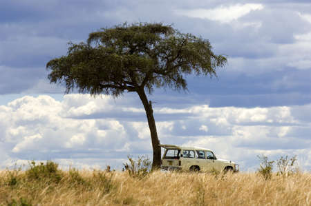 mara: view of a 4X4 in the middle of a plain in the natural reserve of masai mara.