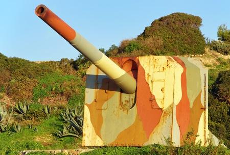 Cannon battery in a coastal defense line photo