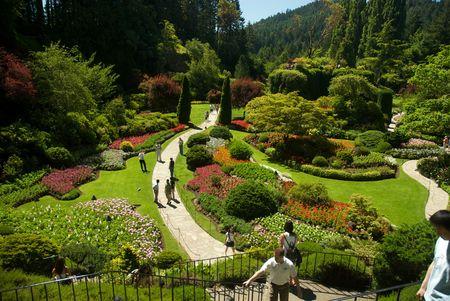Butchart Garden in Victoria, British Columbia photo