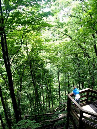 Hiking in the Amicalola Falls State Park in Dawsonville, Georgia Stock Photo - 3509484