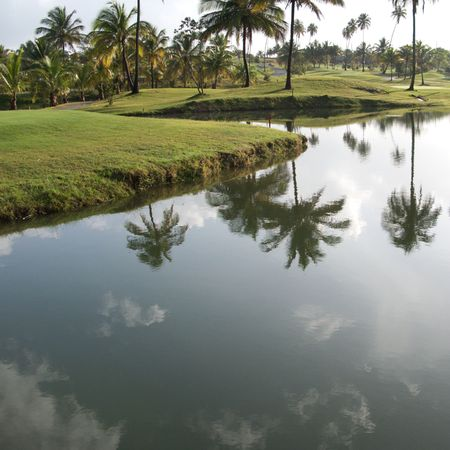 indies: Golf resort in Dorado, Puerto Rico