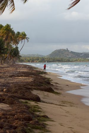 indies: Rural country side of Puerto Rico