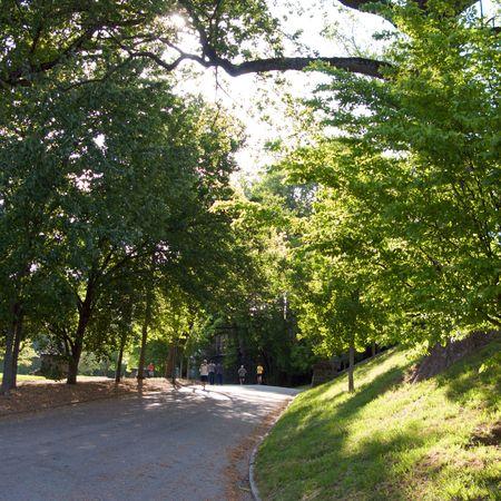 piedmont: Piedmont Park in Atlanta, Georgia