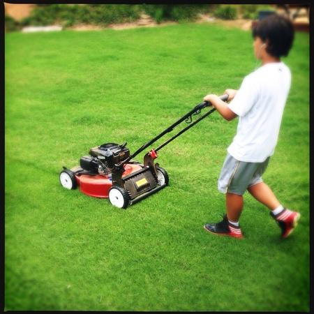 cut grass: Little boy cutting grass