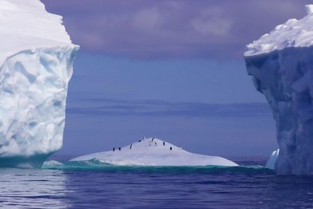 PENGUINS IN A SMALL ICEBERG SORROUNDED BY HUGE ICEBERGS