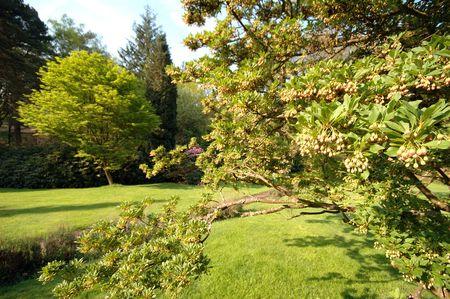 path to wealth: Summer Garden