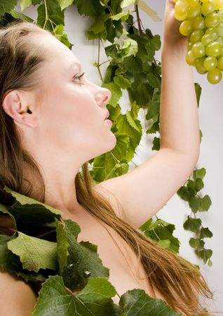 Beautiful green grape Stock Photo - 787030