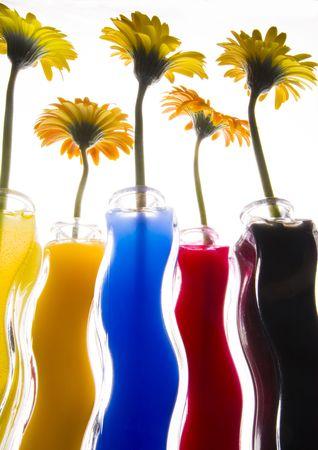 dinamismo: Colourful
