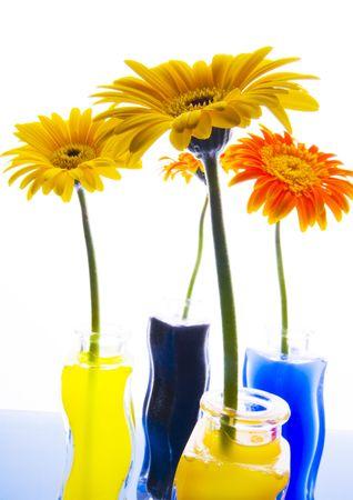 Colourful photo