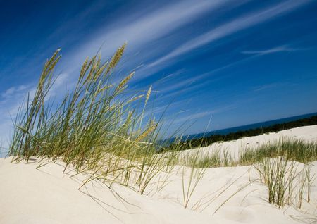 the biosphere: Sand Dunes Stock Photo