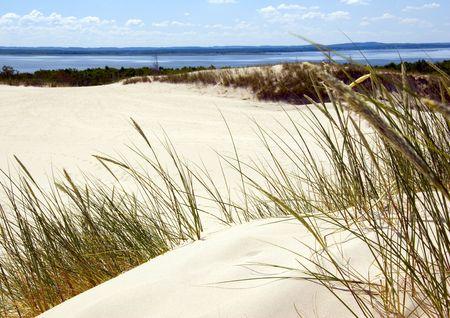 ondulation: Sand Dunes Banque d'images