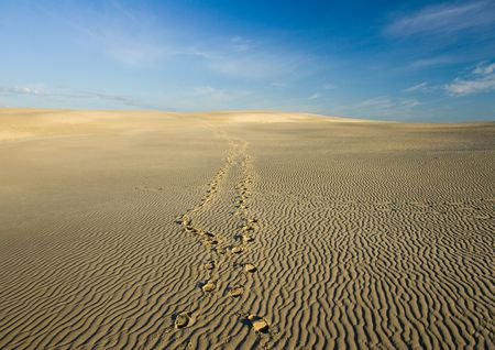 sandbank: Dunes