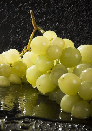dampen: Grape is a green or purple berry that grows in bunches on a vine and that is used for making wine. Raisins are the dried fruit of the grapevine, and the name actually comes from the French word for grape.