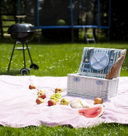 Picnic, Grilling time, Grill photo