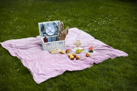 Picnic basket on green lawn photo