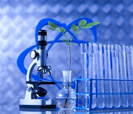 Laboratory glassware equipment, Experimental plant photo