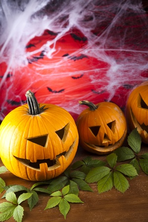 Halloween background with web and spider,pumpkin  photo