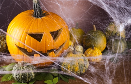 Spider web, Halloween pumpkin Jack photo