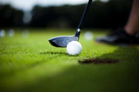 pelota de golf: Pelota de golf en verde prado, conductor