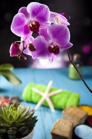 Orchidee, prodotti biologici, Spa photo