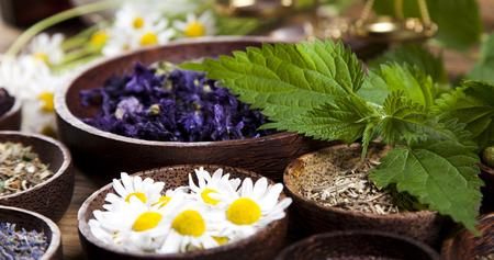 naturmedizin: Nat�rliche Medizin, Kr�uter Lizenzfreie Bilder