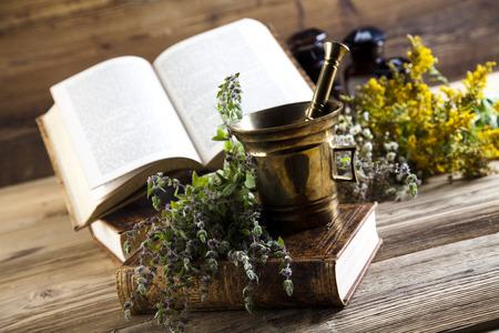century plant: Herbal medicine and book