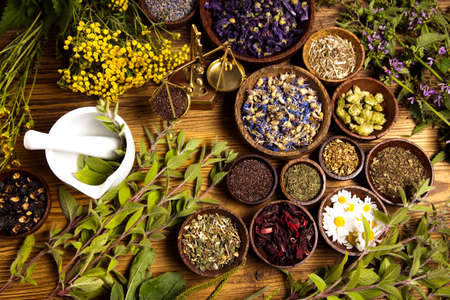 herbs: La medicina alternativa