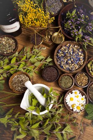 Assorted natural medical herbs and mortar photo