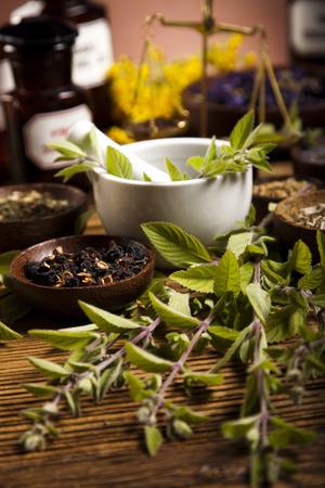 naturmedizin: Nat�rliche Medizin, Kr�uter, M�rtel