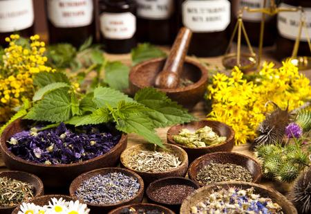 hierbas: Botellas de la medicina y hierbas