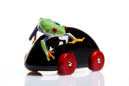 toy car: Toy car and frog Stock Photo