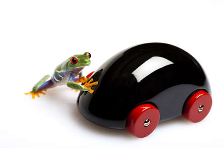 lean over: Toy car and frog Stock Photo