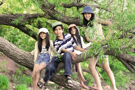 Kids climbing in tree Stock Photo - 4788483