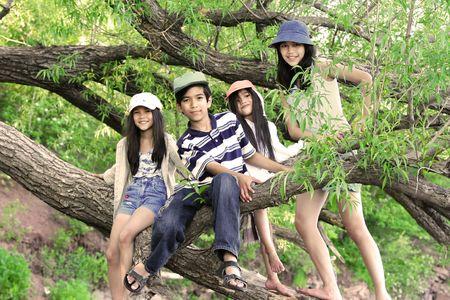 Kids climbing in tree Stock Photo - 4788483