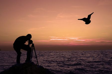 Photographer photographing sunset with seagull silhouette Stock Photo
