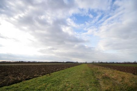 Green field with ploughed parts Stock Photo - 662123