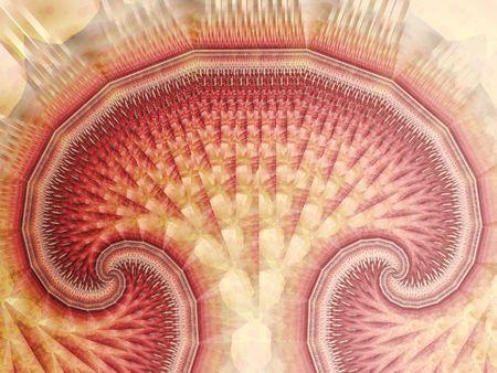 starshine: mushroom fractal
