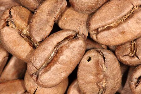 Macro photo of coffee beans photo