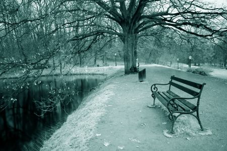 infra red: Infra red photo of bench in park