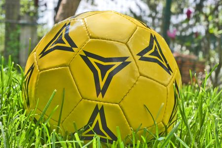 Yellow and black soccer ball in grass