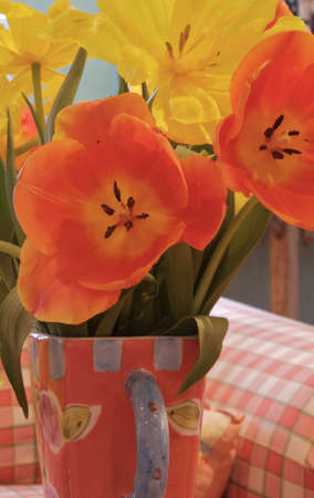 coral toned vase and paid couch to match with yellow and coral tulips, up close macro shot Stock Photo