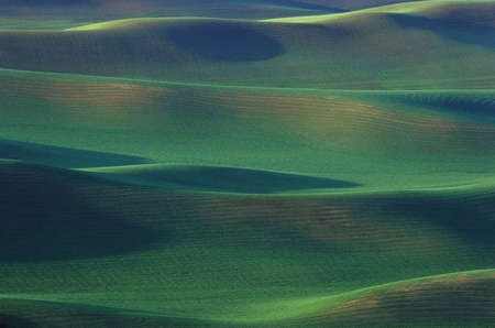 Abstract Green rolling hills