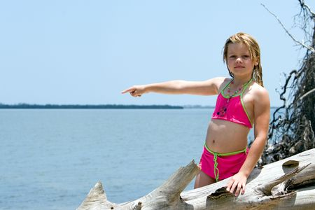 waters  edge: Young girl posing on driftwood at waters edge Stock Photo