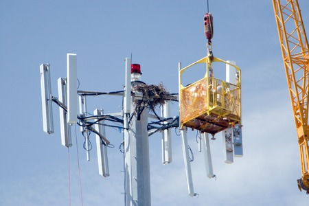 upgrading: Cell phone company upgrading a communications tower Stock Photo