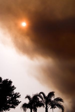 obscuring: Florida east coast wildfire smoke plume obscuring the sun Stock Photo