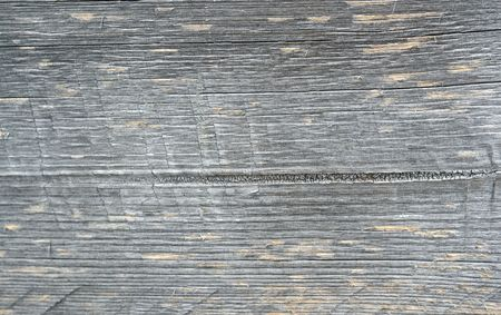 Weathered grayed water damaged wood texture  Stock Photo