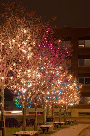 Christmas Lights at night lighting up the night.