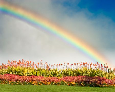 is raining: Flowers with a rainbow behind them Stock Photo
