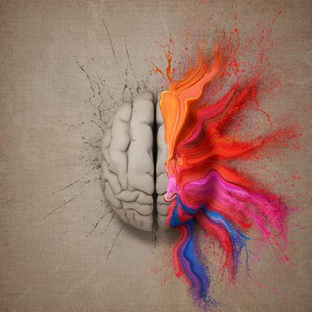 cerebro: Mente creativa o el cerebro ilustran con colorido salpicaduras de pintura y dispersión. Ilustraciones conceptuales.